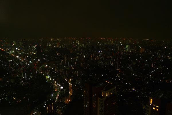 生ビールブログ -とりあえず生!--49階からの眺め