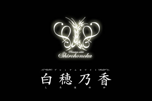 生ビールブログ -とりあえず生!--白穂乃香