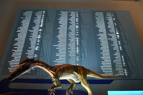 恐竜の系譜