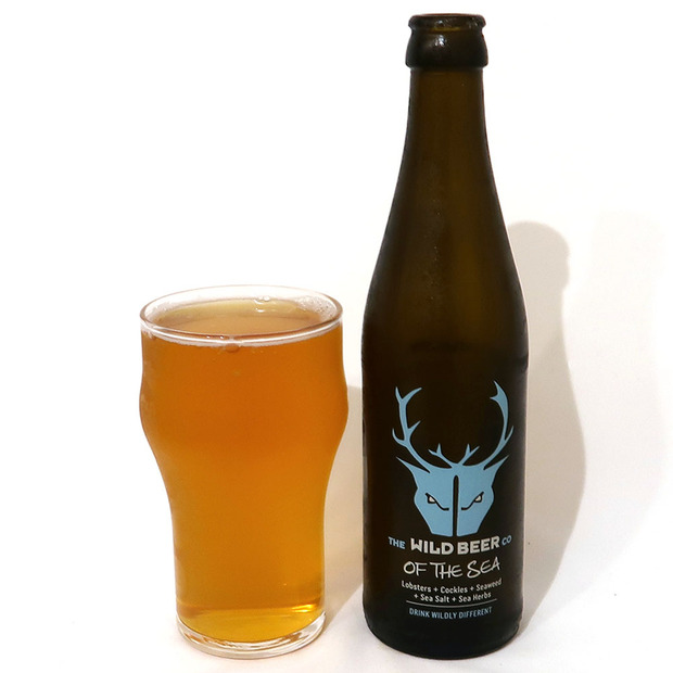 イギリス Wild Beer Co OF THE SEA